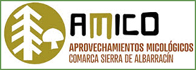 Imagen del logotipo del proyecto AMICO (Aprovechamiento micológico de la comarca de albarracin)