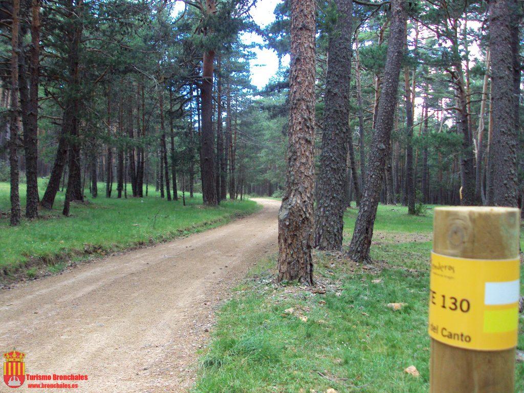 Imagen de un sendero para hacer excursiones por la Sierra de Albarracín.